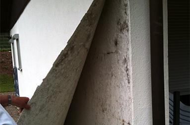 Schimmel und schadensanalyse maler imhof for Raumgestaltung analyse
